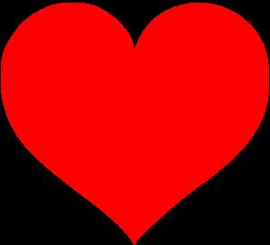 serce medycyna chińska
